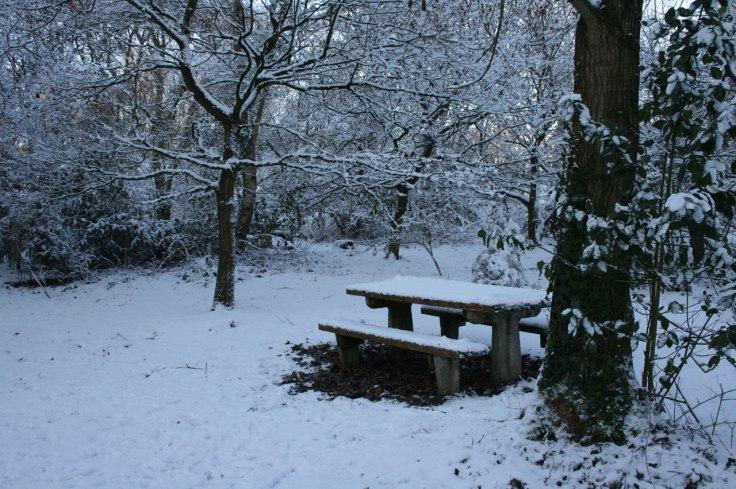 picnic-bench-in-snow-29941281359497toaj
