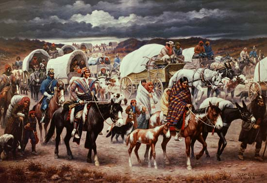 research paper on indian removal act